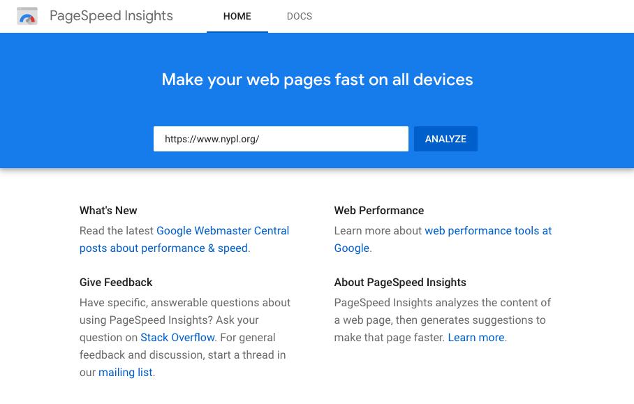 Screenshot - Google PageSpeed Insights Home Screen